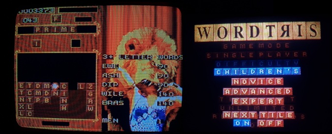 Wordtris-SNES-Children-Head_In_Lion_Mouth